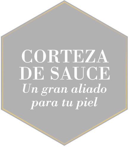 Corteza de Sauce